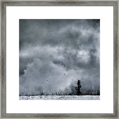 Land Shapes 5 Framed Print