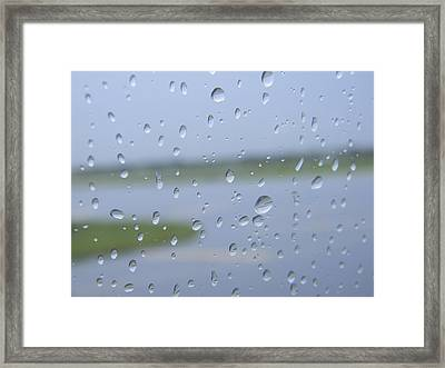 Landed Framed Print by Natalie Lizza