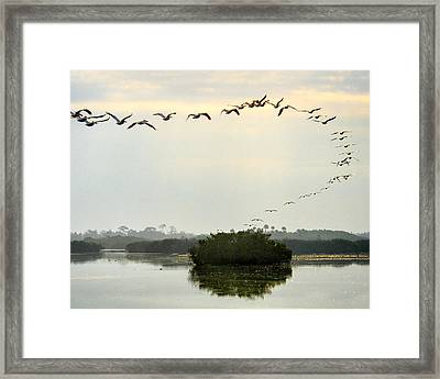 Landing Pattern Framed Print by William Beuther