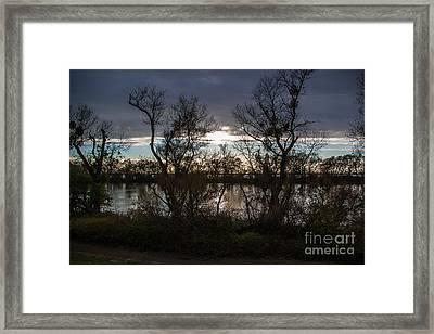 Landscape 23 W Sac Ca Framed Print