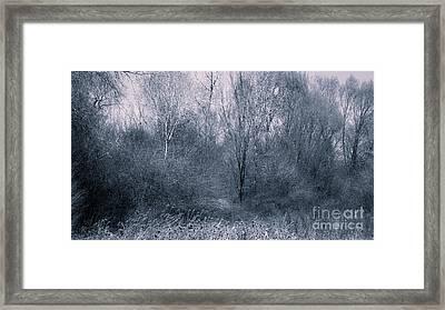 Landscape A10b Taos Nm Framed Print