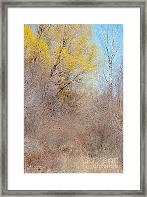 Landscape A10j Taos Nm Framed Print