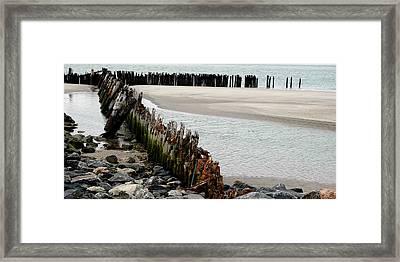 Landscape At Ocean Framed Print by Dorin Adrian Berbier