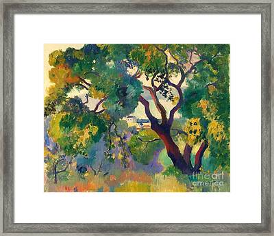 Landscape At St Tropez  1 Framed Print by Pg Reproductions