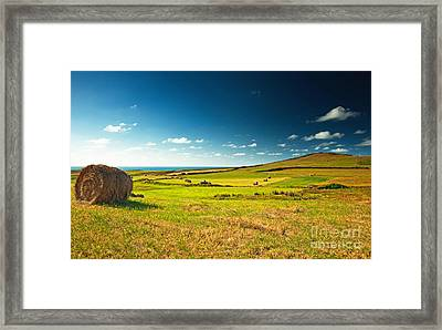 Framed Print featuring the photograph Landscape At Summer by Boon Mee