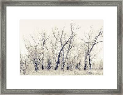 Landscape E10f Taos Nm Framed Print