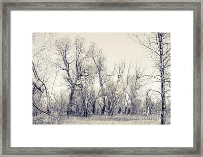 Landscape E10i Taos Nm Framed Print