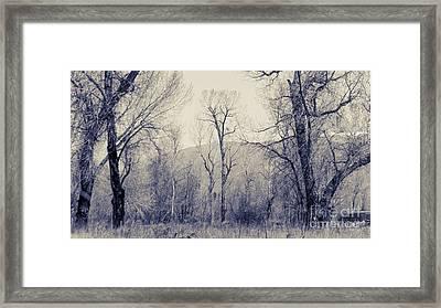 Landscape E10w Taos Nm Framed Print