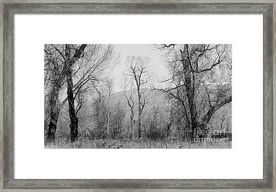 Landscape E10x Taos Nm Framed Print