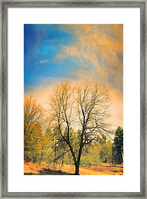 Landscape In Blue And Yellow  Framed Print by Douglas MooreZart