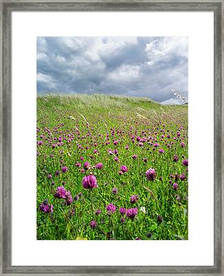 Landscape In The Northern Part Framed Print