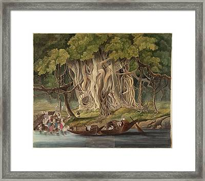 Landscape With Banyan Tree Framed Print by British Library