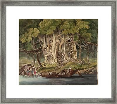 Landscape With Banyan Tree Framed Print
