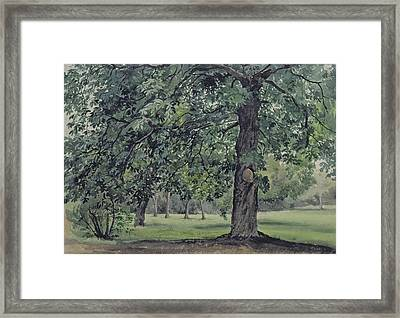 Landscape With Chestnut Tree In The Foreground Framed Print by Thomas Collier