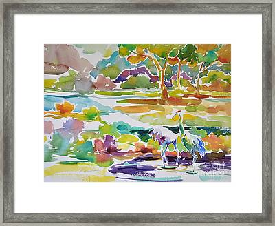 Landscape With Sand Hill Cranes Framed Print