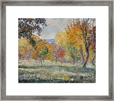 Landscape With Trees Framed Print by Henri Lebasque