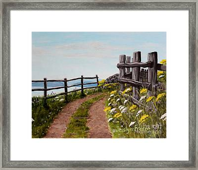 Lane At Highland Village Framed Print