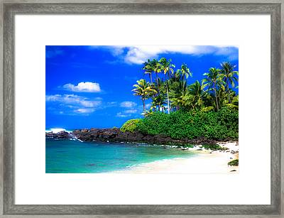 Laniakea Beach Oahu Framed Print