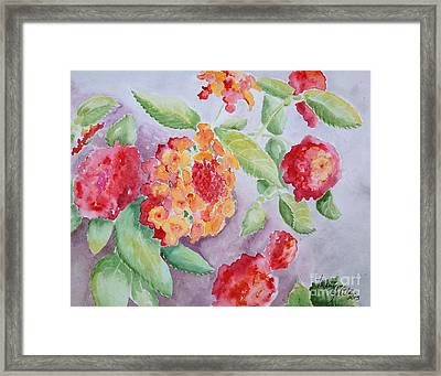 Framed Print featuring the painting Lantana by Marilyn Zalatan