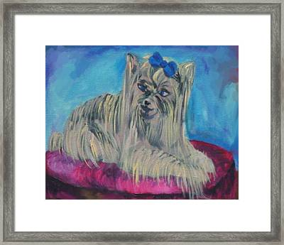 Lap Of Luxury Framed Print by Gail Daley