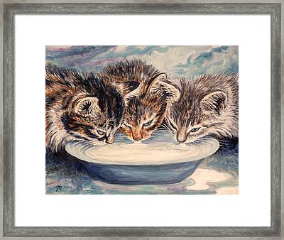 Lap Of Luxury Kittens Framed Print by Linda Mears
