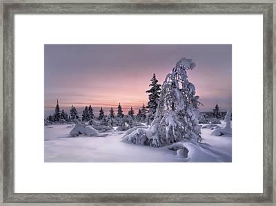 Lappland - Winterwonderland Framed Print