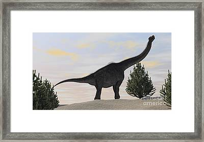 Large Brachiosaurus Amongst Pine Trees Framed Print by Kostyantyn Ivanyshen