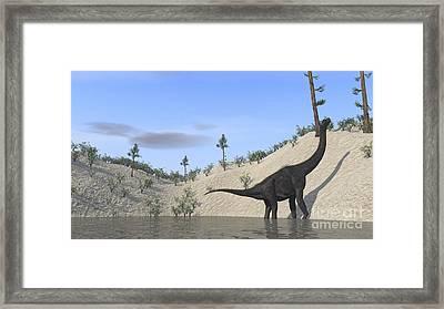 Large Brachiosaurus Standing In A Lake Framed Print by Kostyantyn Ivanyshen
