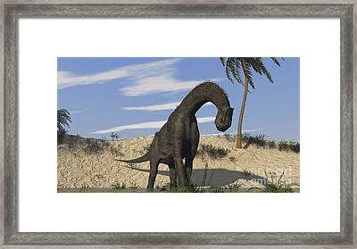 Large Brachiosaurus Standing In Water Framed Print by Kostyantyn Ivanyshen