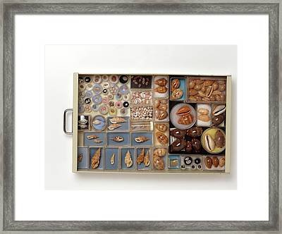 Large Collection Of Shells In Drawer Framed Print