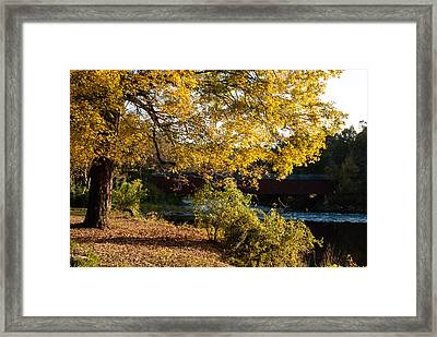 Large Spreading Oak On Banks Of West River West Cornwall Connecticut Framed Print by Robert Ford