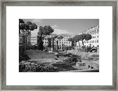 Framed Print featuring the photograph Largo Di Torre - Roma by Dany Lison