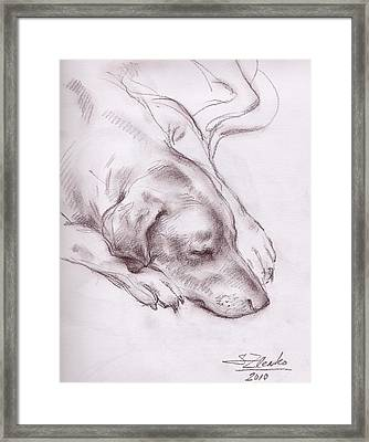 Lars Sleeping Framed Print