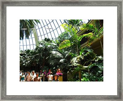 Las Vegas - Mirage Casino - 12127 Framed Print by DC Photographer