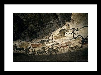 Pleistocene Photographs Framed Prints