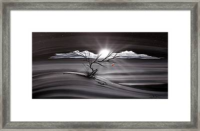 Last Apple 53 Framed Print by T Dapore