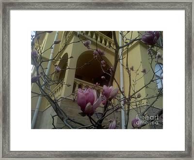 Last Artefact Sochi Spring Framed Print by Vale Tek