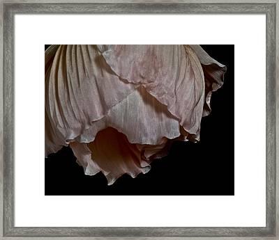Last Dance Framed Print by Art Barker
