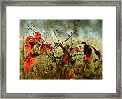 Last Days Of Autumn Framed Print by Georgiana Romanovna