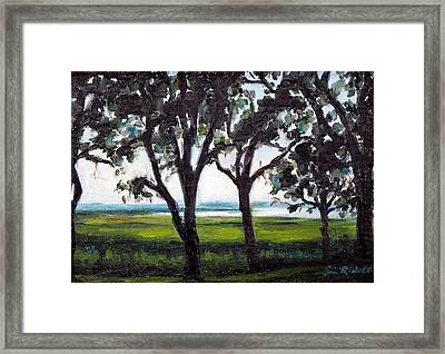 Last Days Of July Framed Print