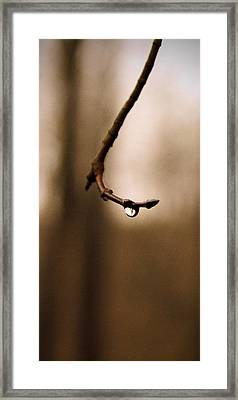 Last Drop Framed Print by Photographic Arts And Design Studio