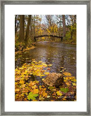 Last Journey Framed Print by Rima Biswas