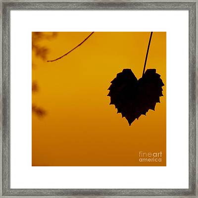 Last Leaf Silhouette Framed Print by Joy Hardee