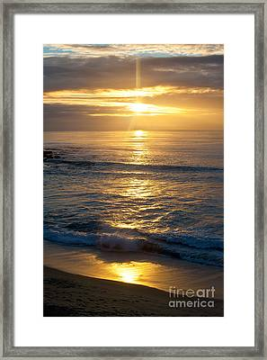 Last Light Framed Print by Chris Heitstuman