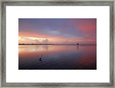 Last Light Framed Print by HH Photography of Florida
