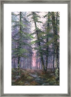 Last Light On Cannock Chase Framed Print by Jean Walker