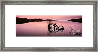 Last Light Framed Print by Rod McLean