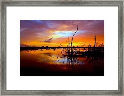 Last Light Framed Print by Tracy Welker