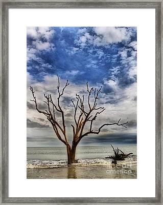 Last Refuge Framed Print