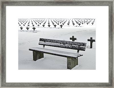 Last Resting Place Of Snowflakes Framed Print